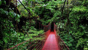 Kosta Rika'ya Nasıl Gidiliyor?